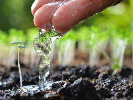 Event to Look at Farming, Water Quality, Ohio's Efforts for