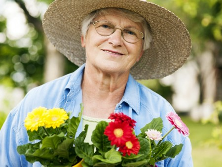 81f2ce65 Gardeners can choose from more than 400 tree, shrub, herb and flower  varieties at