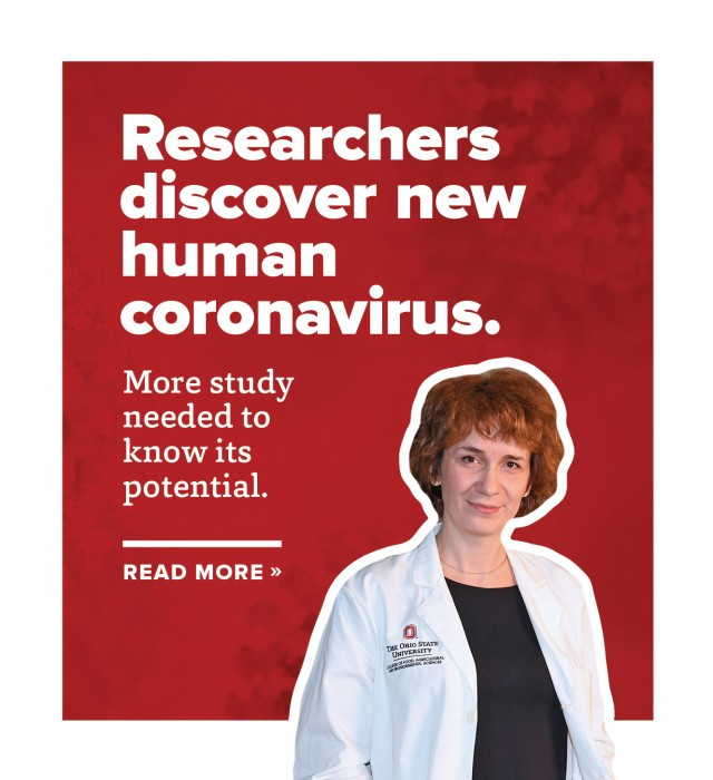 More study needed to know potential of new human coronavirus.