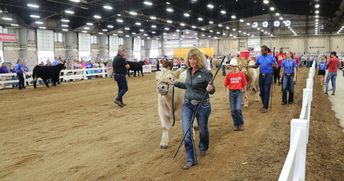 2020 Ohio State Fair Equine Show.Ohio State S Inaugural Dean S Charity Steer Show A Rousing