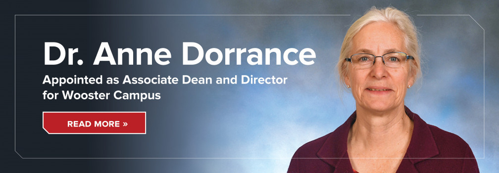 Dr. Anne Dorrance appointed as Associate Dean and Director for Wooster Campus