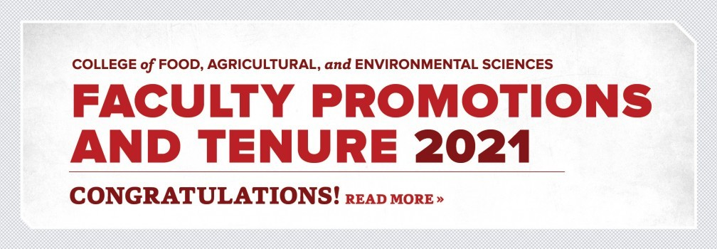 Congratulations on 2021 Faculty Promotions and Tenure