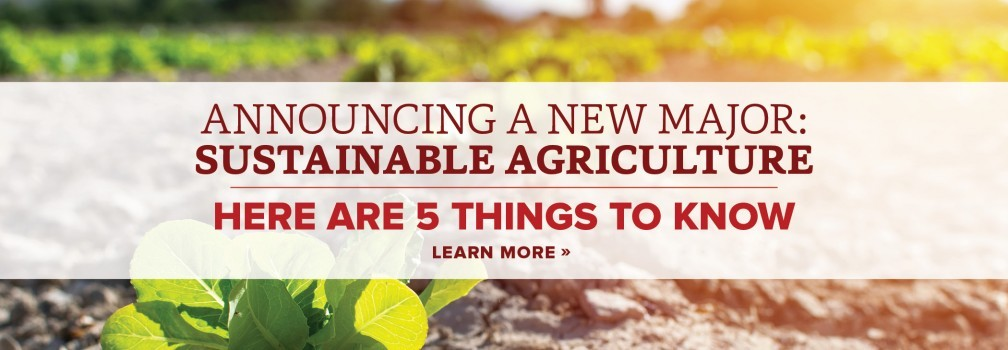 Announcing a new major: Sustainable Agriculture. Here are 5 things to know.