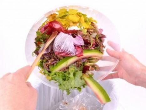 SAVING TONS OF FOOD WASTE