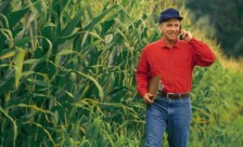 CCA Exam prep course to be offered by CFAES agronomists.