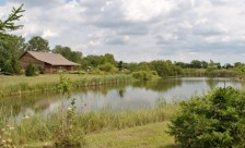 Gwynne Conservation Area, Farm Science Review, London, Ohio. Photo: CFAES