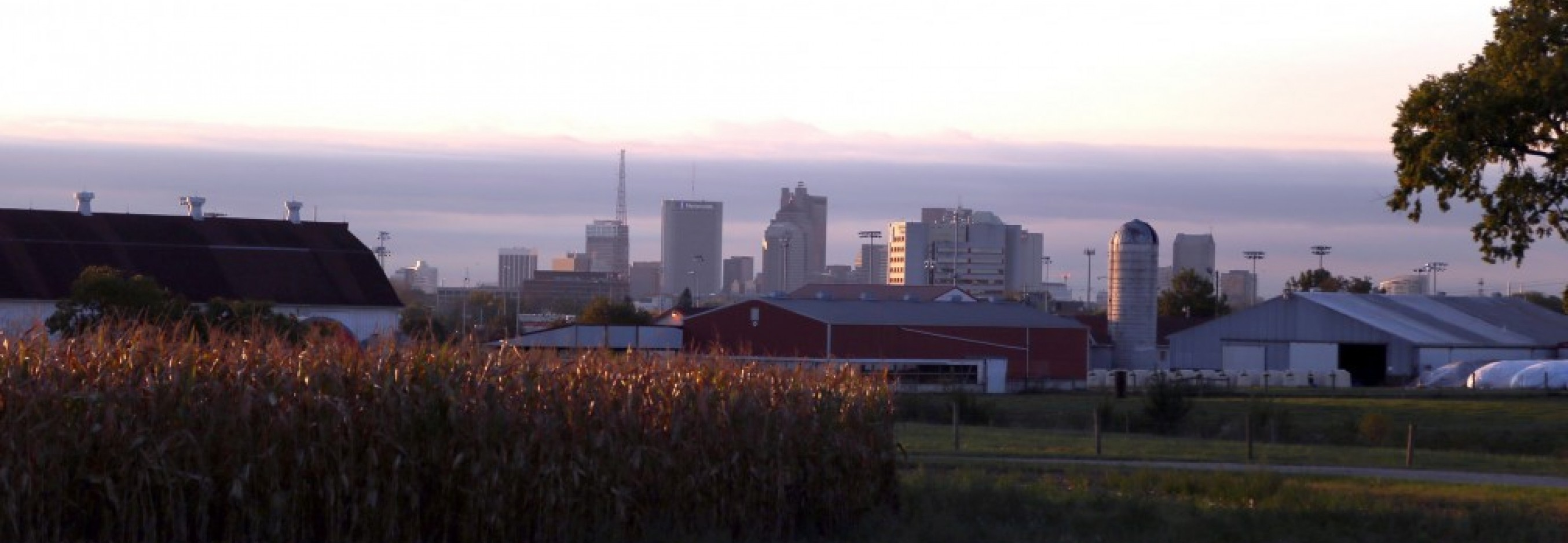 Waterman view of Columbus skyline