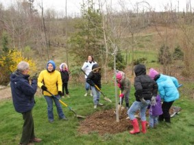 Secrest Arboretum curator Ken Cochran (left) speaks with volunteers planting an oak tree to mark Arbor Day and the Tree Campus USA designation.