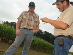Wayne County Farmers Dan and Randy Bower examine drought-impacted corn
