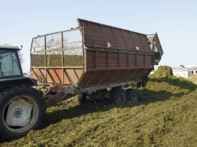 Producer making silage stocks for animal feed in winter. Photo: Thinkstock.