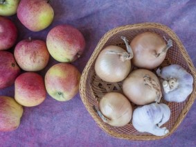image of apples and a basket of garlic bulbs on a cloth