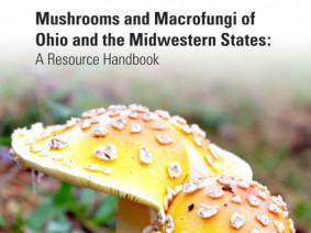 Mushroom handbook cover