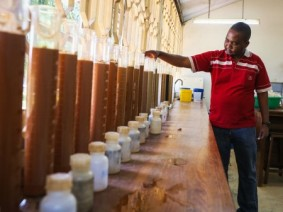 Doctoral student Boniface Massawe and soil samples