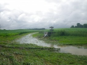 Researchers are working to reduce nutrient runoff to improve water quality. Photo: David Tomashefski, SENR.