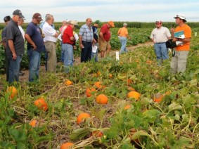 Presenters and attendees interact during a Pumpkin Field Day event. (Photo by Ken Chamberlain)