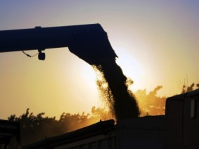 Combine unloading grain. Photo: Thinkstock.