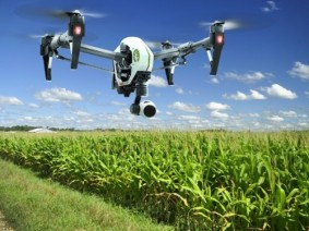 Drones like this one will be outfitted with sensors capable of detecting plant pathogens from the air.  Photo: Getty Images