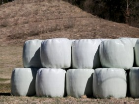 Hay bales wrapped in cellophane. Photo: Thinkstock