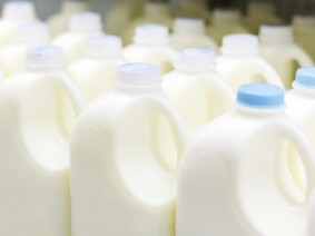 milk jugs