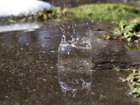 Recent rainy weather has left many yards and gardens under water throughout Ohio. (iStock image)
