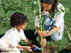 Girls planting tree