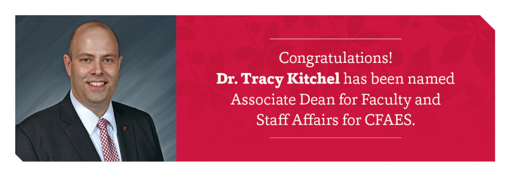 Dr. Tracy Kitchel has been named Associate Dean for Faculty and Staff Affairs