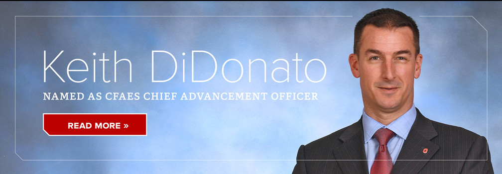 Keith DiDonato named CAO