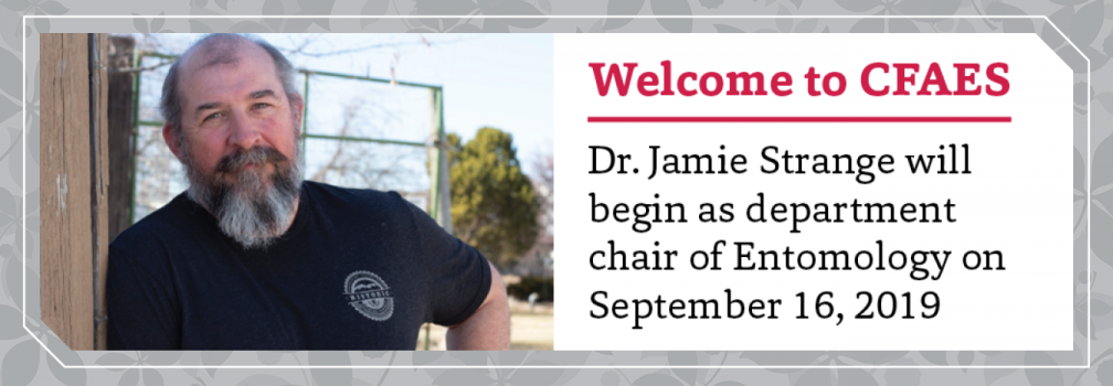 Dr. Jamie Strange will begin as department chair of Entomology on September 16, 2019