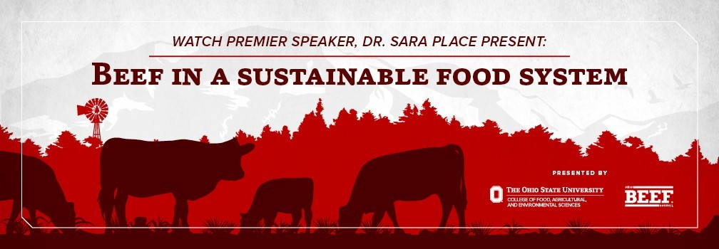 Beef in a Sustainable Food System