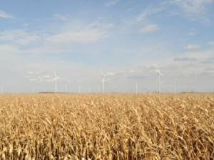 Wind energy and bioproducts from crops are among the topics that will be explored at the 2014 Renewable Energy Workshop. (Photo by Ken Chamberlain)