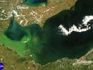 This is a satellite image of 2013 intense bloom, which was concentrated in Lake Erie's western basin. Photo: NOAA