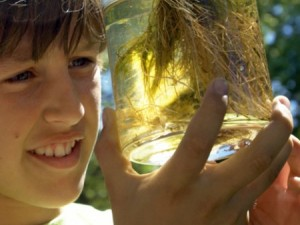 Discover water science in 4-H