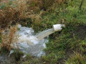 P Risk Index tile drainage