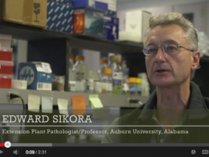 The videos feature researchers from various land-grant universities.