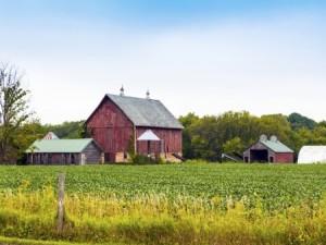 Farm buildings (Photo: Thinkstock)