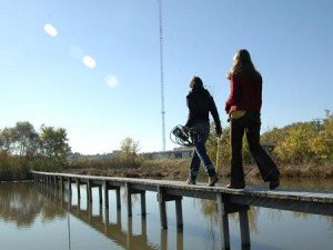 Picture of Olentangy River Wetland Research Park.