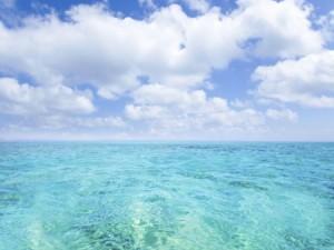 ocean with sky