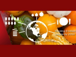 food for billions icon