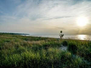 Phosphorus filters are being studied in Ohio as a possible means of improving water quality in Lake Erie and other bodies of water. (Photo: Getty Images)