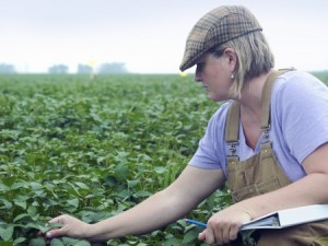 OSU Extension offers a number of programs supporting women farmers in running their farms. (Photo: Thinkstock)