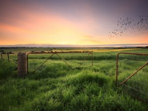 A course in starting a farm will be held in Scioto and Butler counties beginning in January. (Photo: Thinkstock)