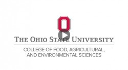 Update on Research Activities in the College of Food, Agricultural, and Environmental Sciences