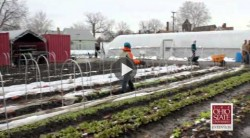 Cleveland urban farm creates jobs for people with disabilities.